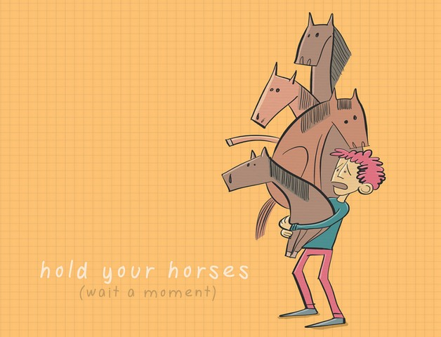 Idioms hold your horses
