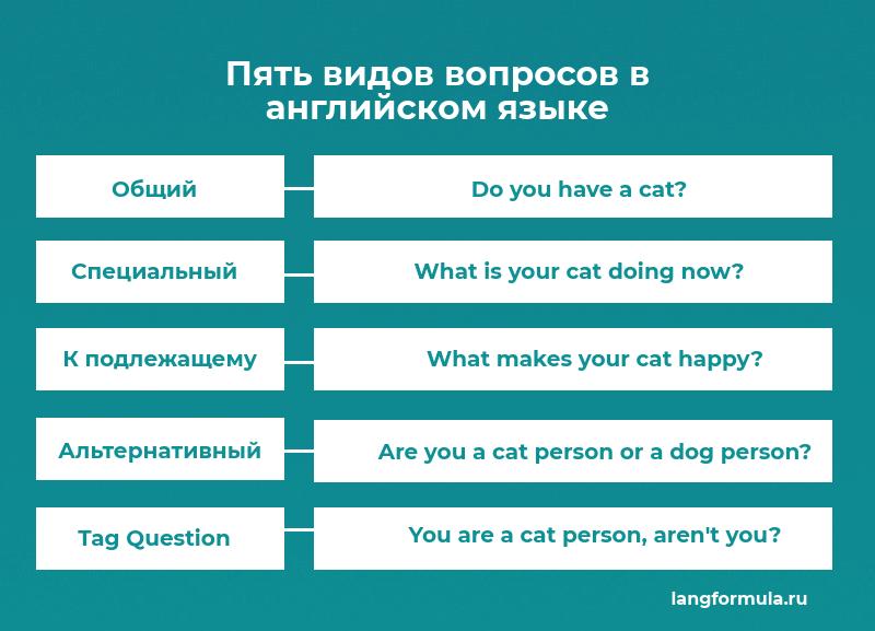 виды вопросов в английском языке