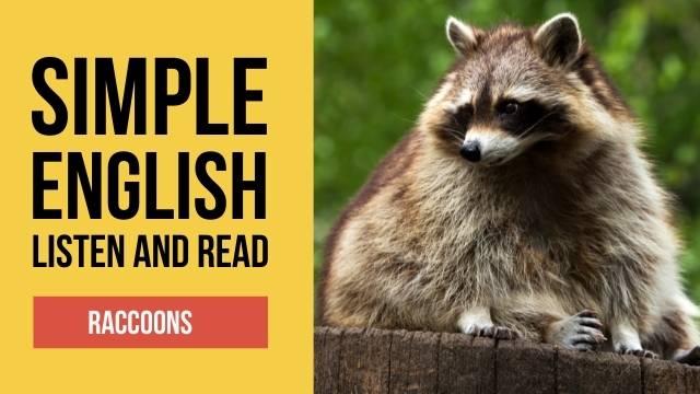 легкий текст на английском про животных