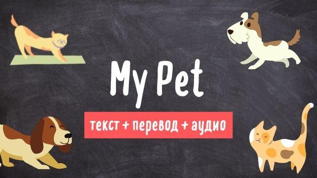 my pet текст на английском языке